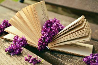 10 полезных книг, которые быстро прочесть