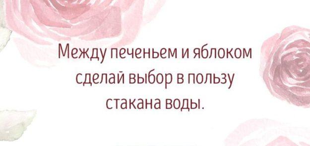 sovety-625x296