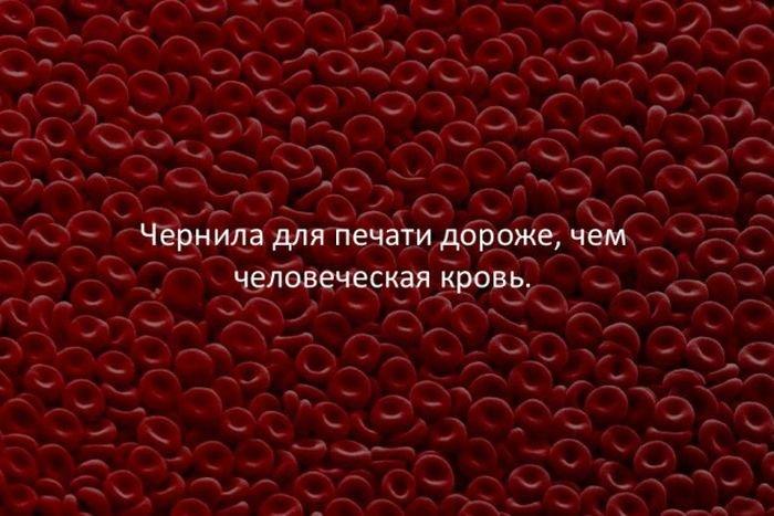 interesnye_fakty_43_foto_10