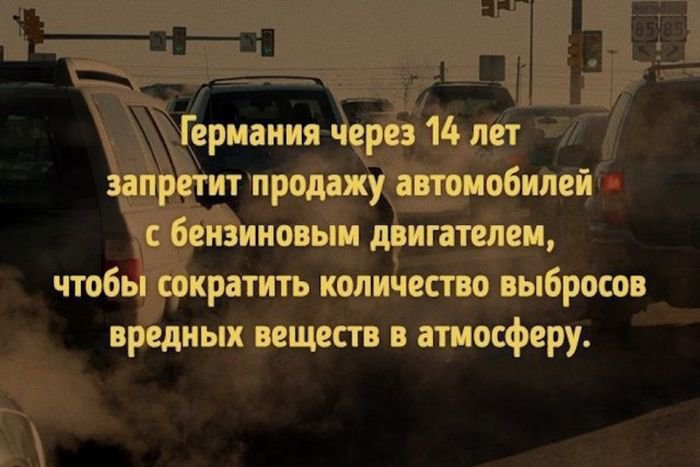 interesnye_fakty_43_foto_12