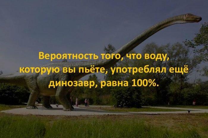 interesnye_fakty_43_foto_2