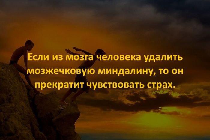 interesnye_fakty_43_foto_26