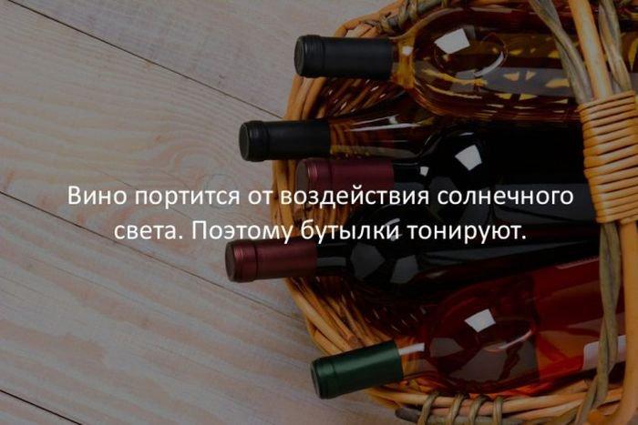 interesnye_fakty_43_foto_29