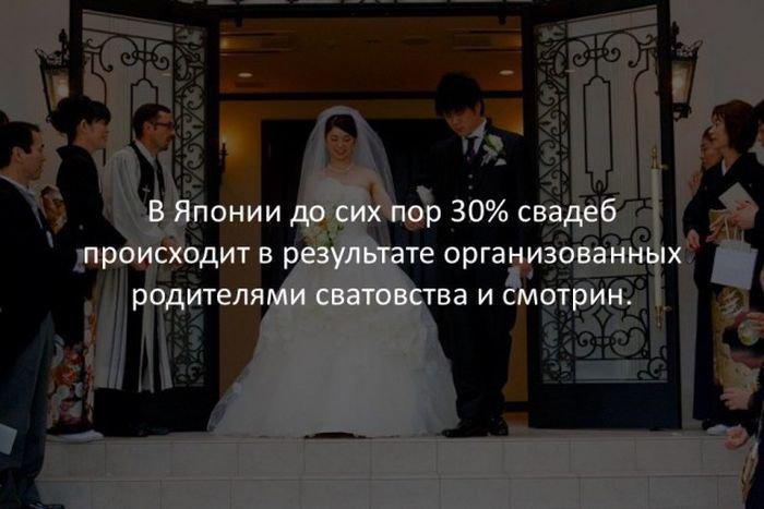 interesnye_fakty_43_foto_40