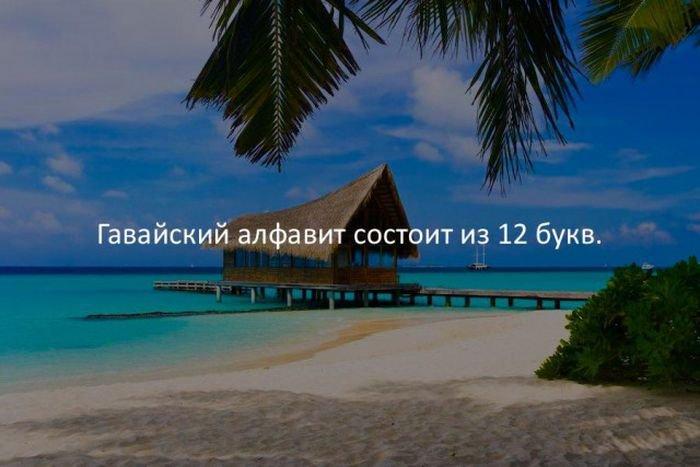 interesnye_fakty_43_foto_43