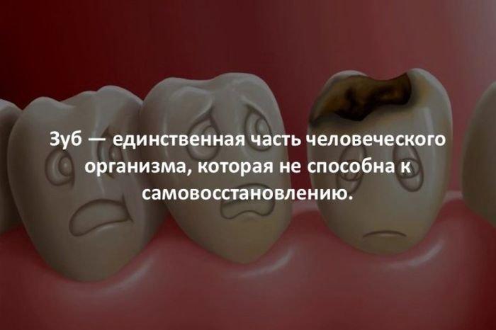 interesnye_fakty_43_foto_5