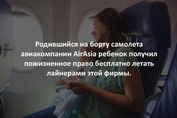 interesnye_fakty_43_foto_8