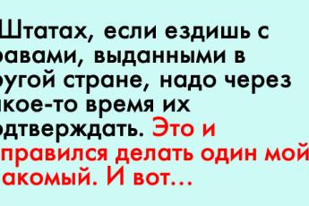 1-81[1]