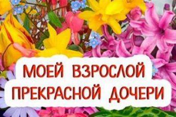 safe_imagengsh[1]