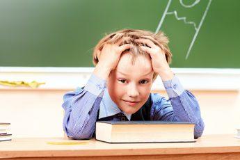 Как ученик в школе пересдавал контрольную. Ответ про дятла - просто умора!